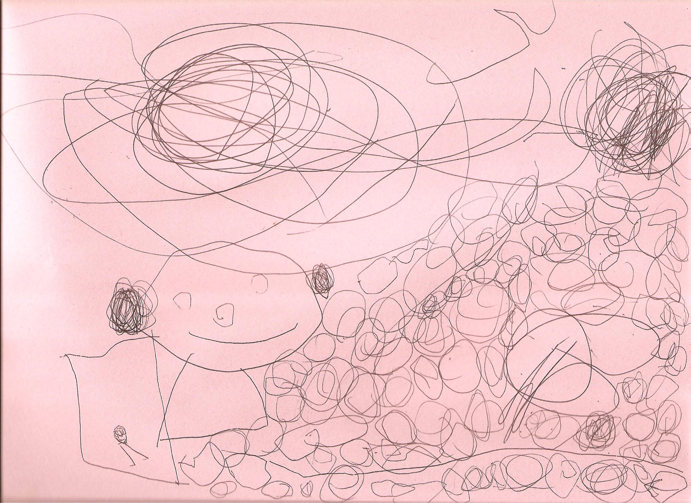 2008-10-25-allison-pen-drawing.jpg