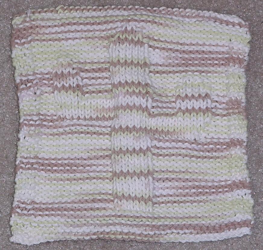 2009-01-24-saguaro-dishcloth-by-amy-jo.JPG