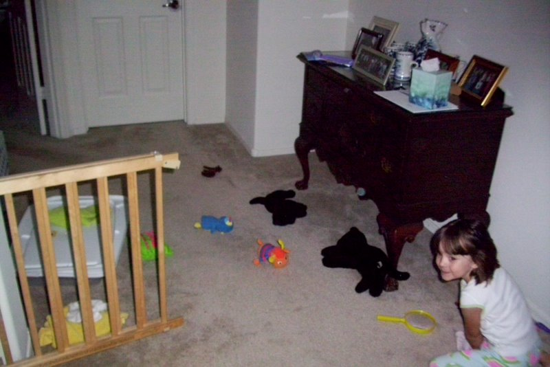 2009-07-30-toy-mess-4.JPG
